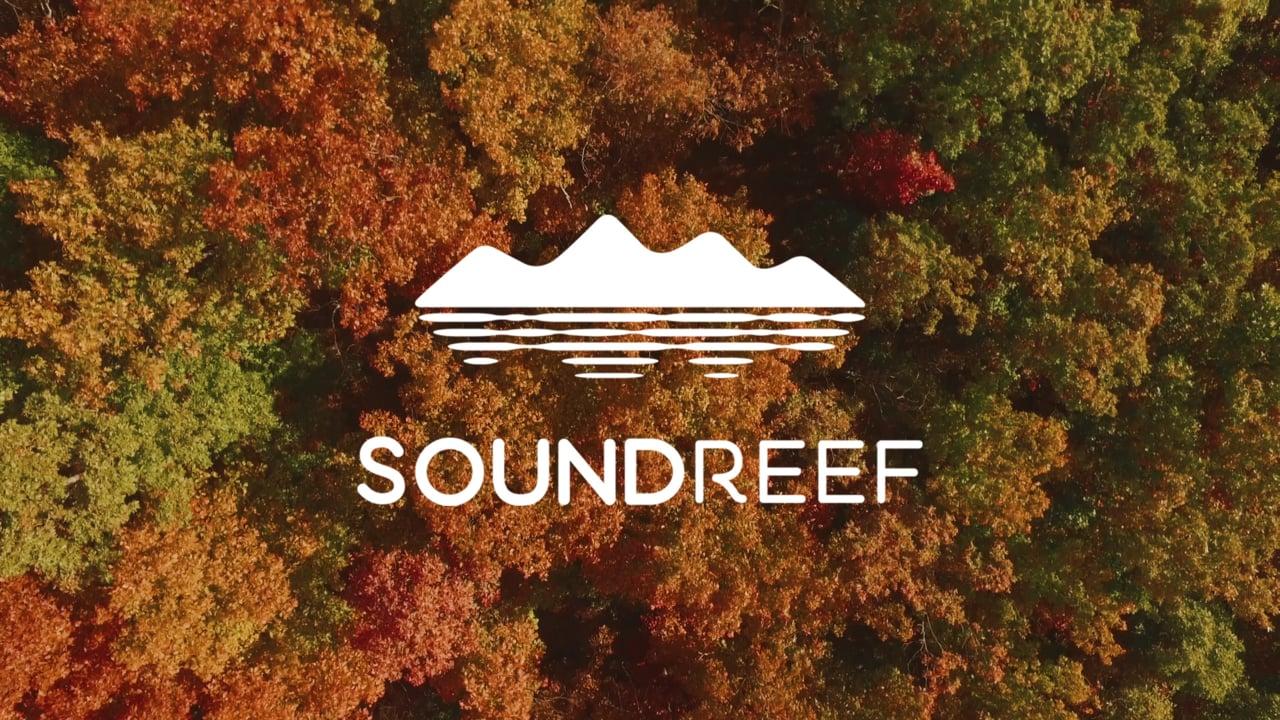 Συνεργασία ΠΑΣΚΚΕΔΙ-Soundreef®: τι πρέπει να γνωρίζω για οφέλη που αποκτά το κατάστημά μου!