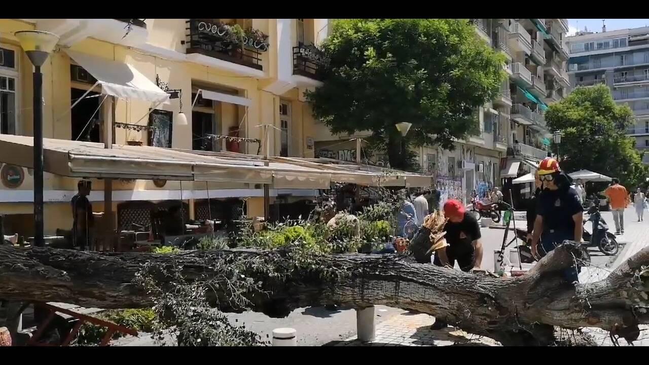 Πτώση δέντρου σε καφέ στο κέντρο της Θεσσαλονίκης