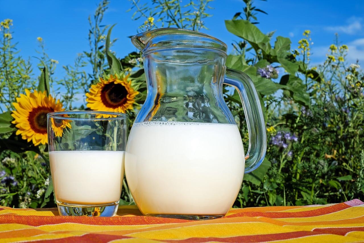 Γαλακτοκομικά προϊόντα από Ελληνικό γάλα - Νέες διευκρινίσεις ΕΦΕΤ