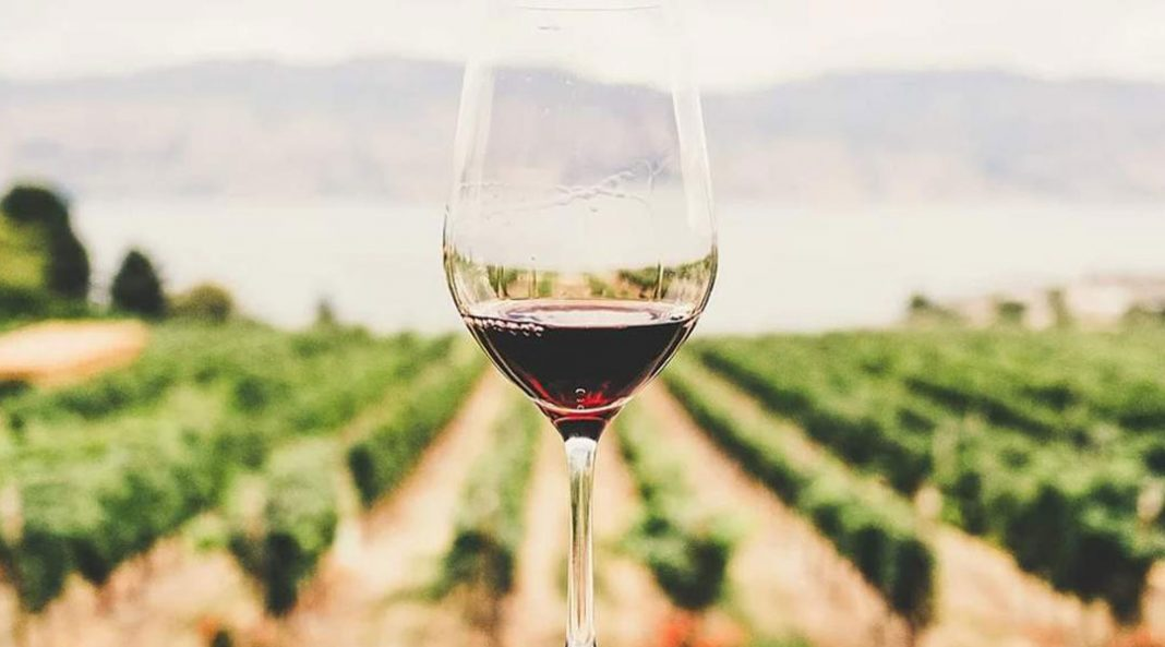 wine-1-1068x593-1.jpg