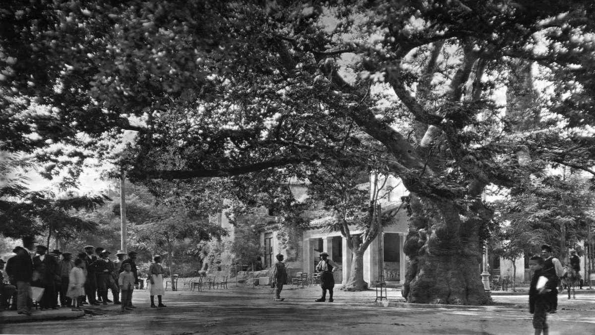 kifisia-1920.jpg