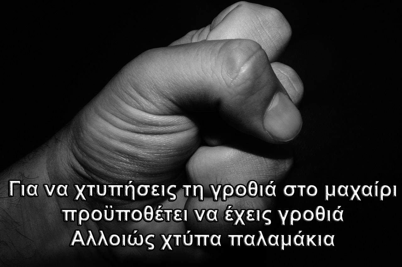 grothia2.jpg